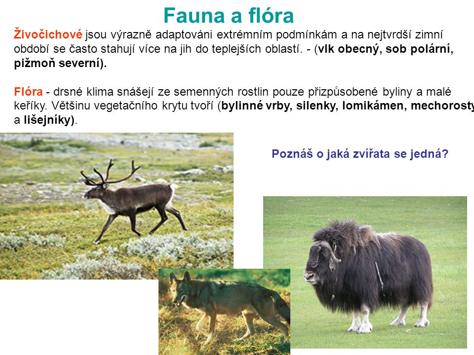 Fauna a flóra FR. STR. 52 - 53