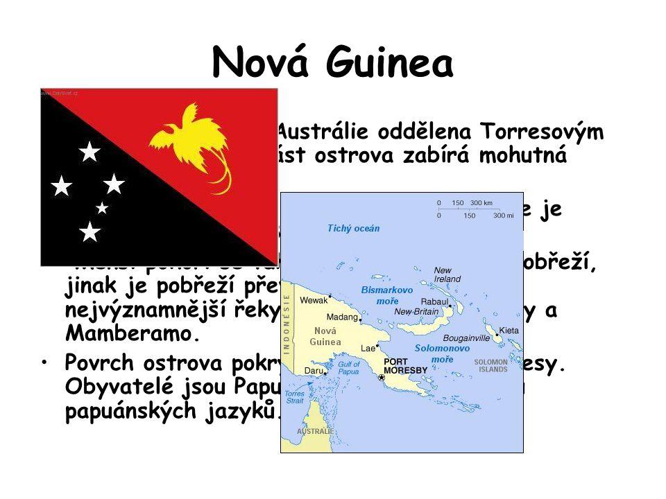 Nová Guinea Nová Guinea je od Austrálie oddělena Torresovým průlivem. Střední část ostrova zabírá mohutná Centrální vysočina.