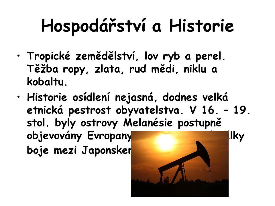Hospodářství a Historie