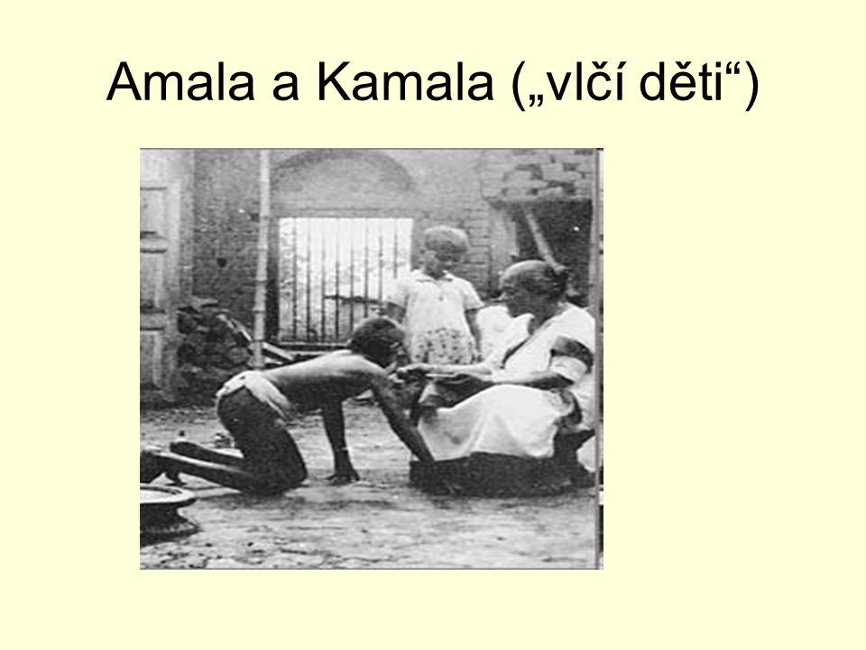 """Amala a Kamala (""""vlčí děti )"""