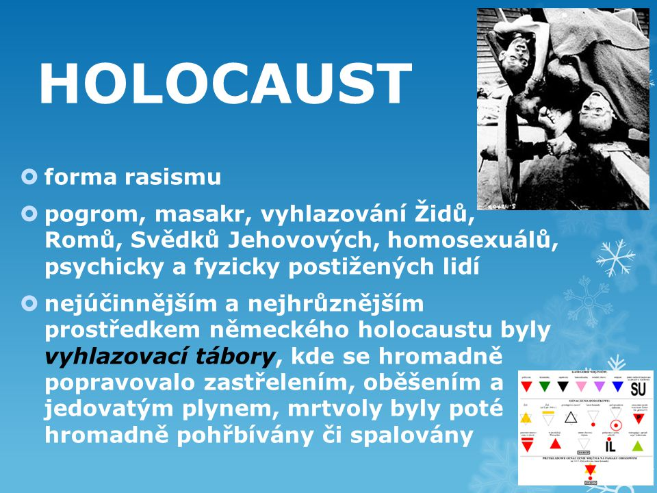 HOLOCAUST forma rasismu