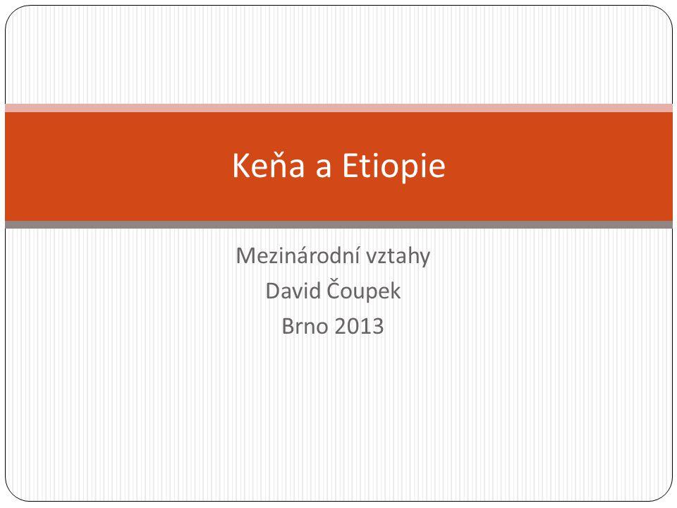 Mezinárodní vztahy David Čoupek Brno 2013