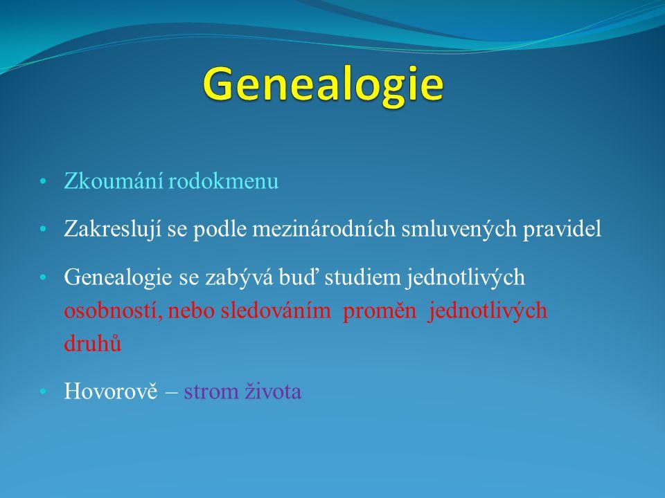 Genealogie Zkoumání rodokmenu