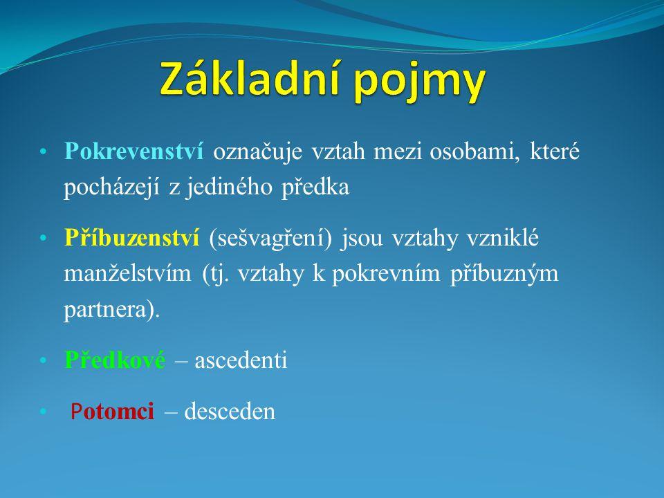 Základní pojmy Pokrevenství označuje vztah mezi osobami, které pocházejí z jediného předka.