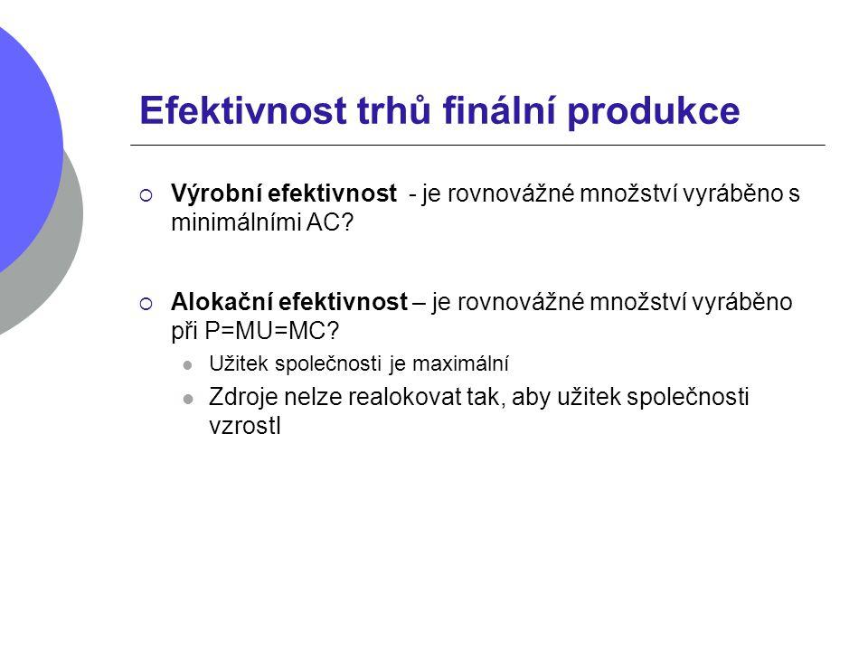 Efektivnost trhů finální produkce