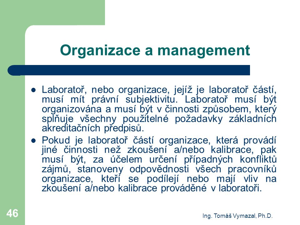Organizace a management