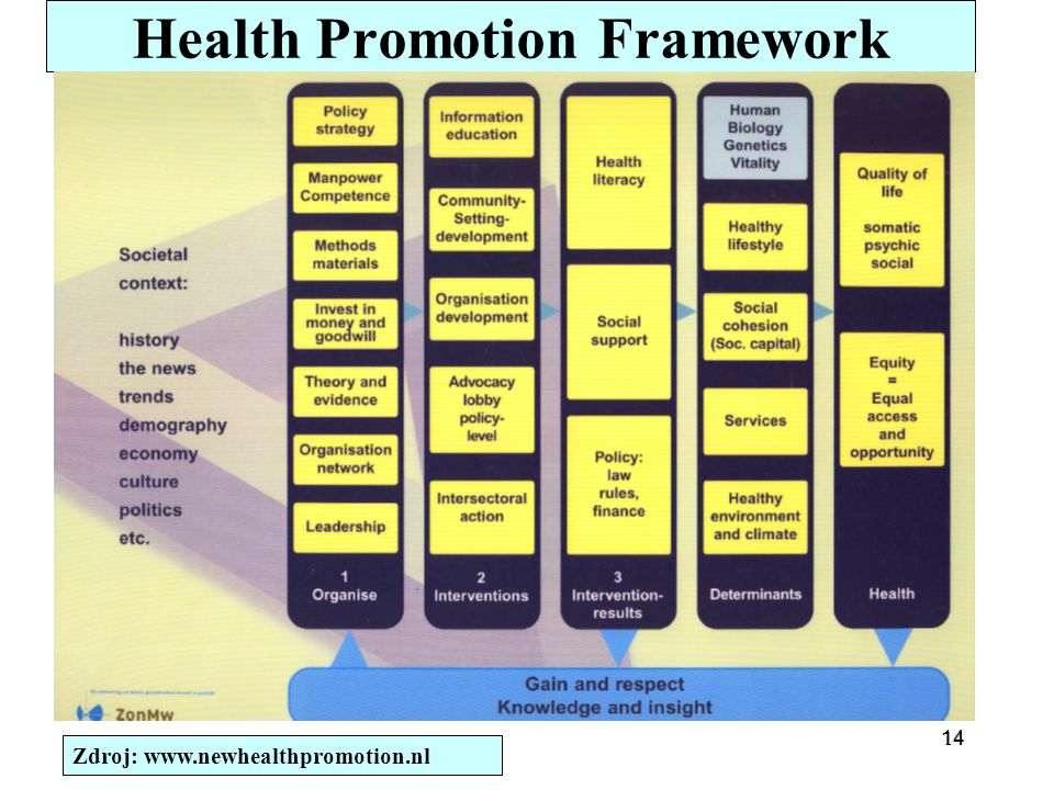 Health Promotion Framework