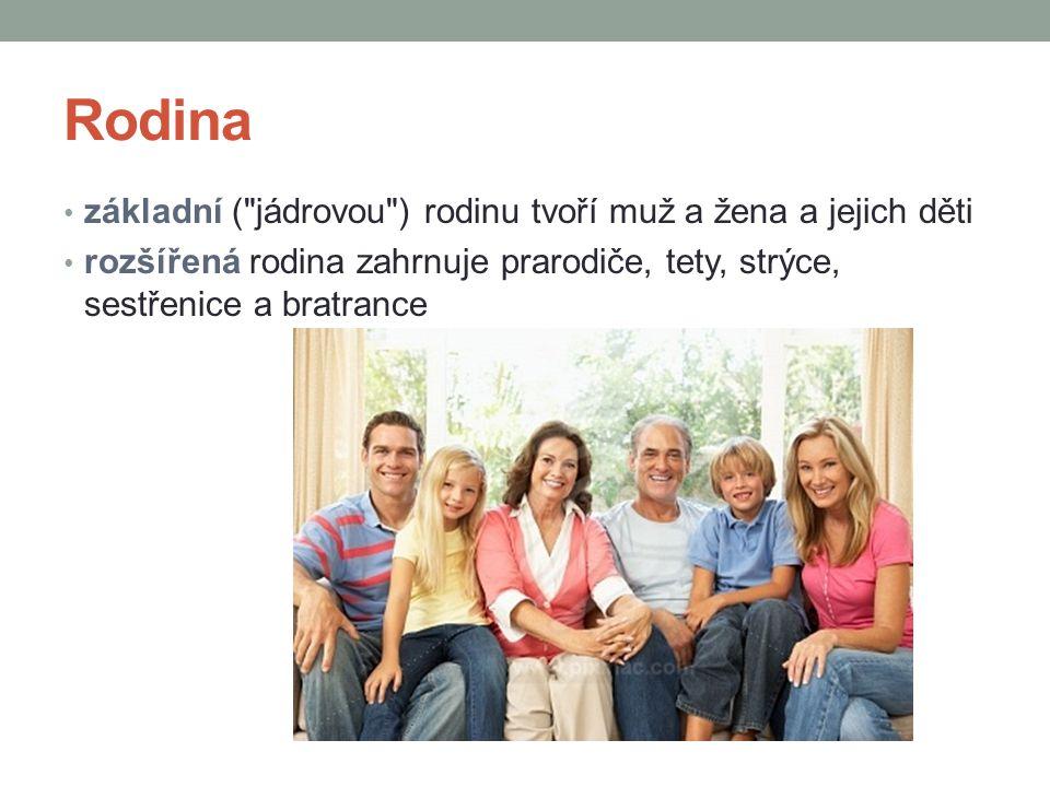 Rodina základní ( jádrovou ) rodinu tvoří muž a žena a jejich děti
