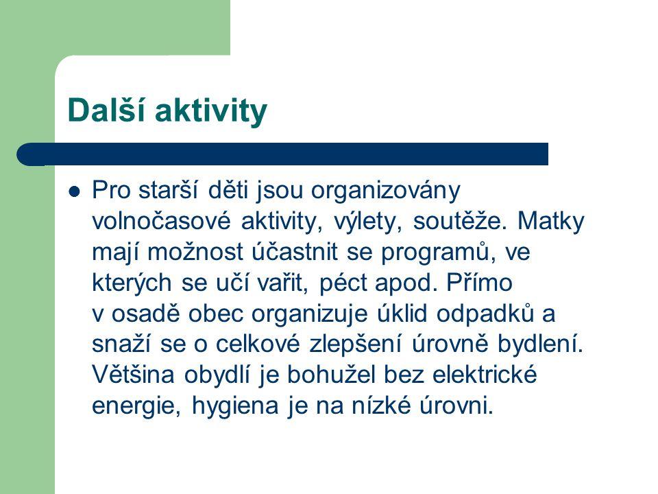Další aktivity