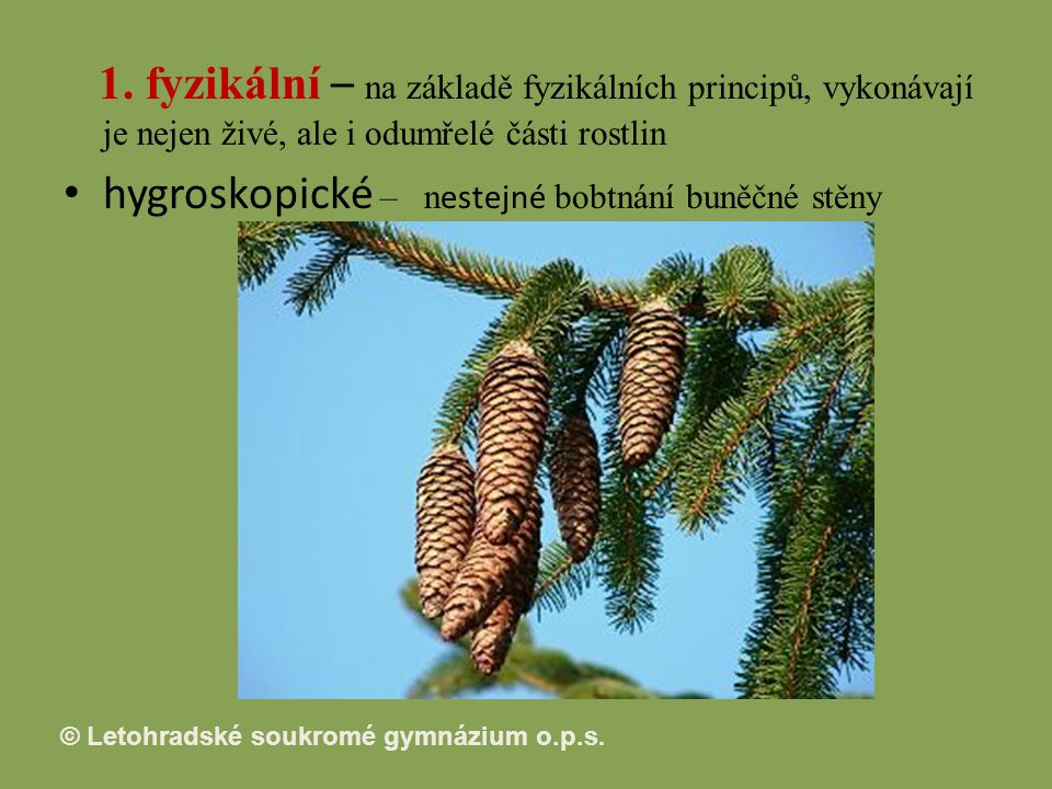 1. fyzikální – na základě fyzikálních principů, vykonávají je nejen živé, ale i odumřelé části rostlin