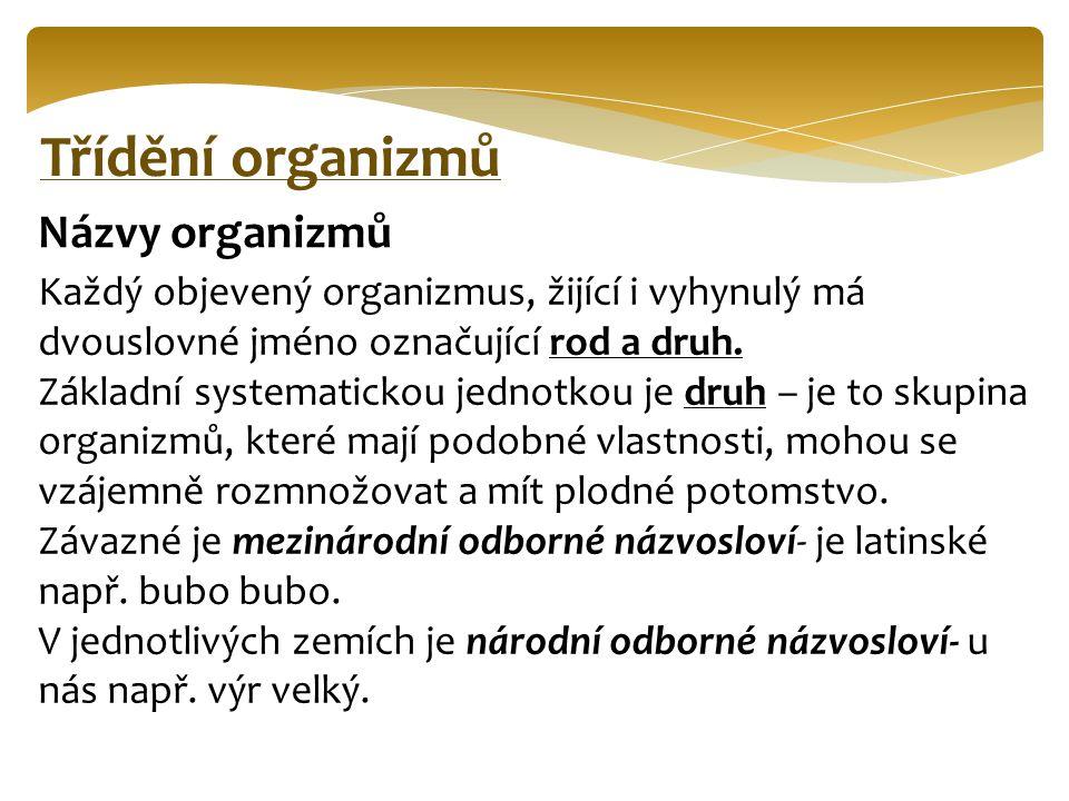 Třídění organizmů Názvy organizmů