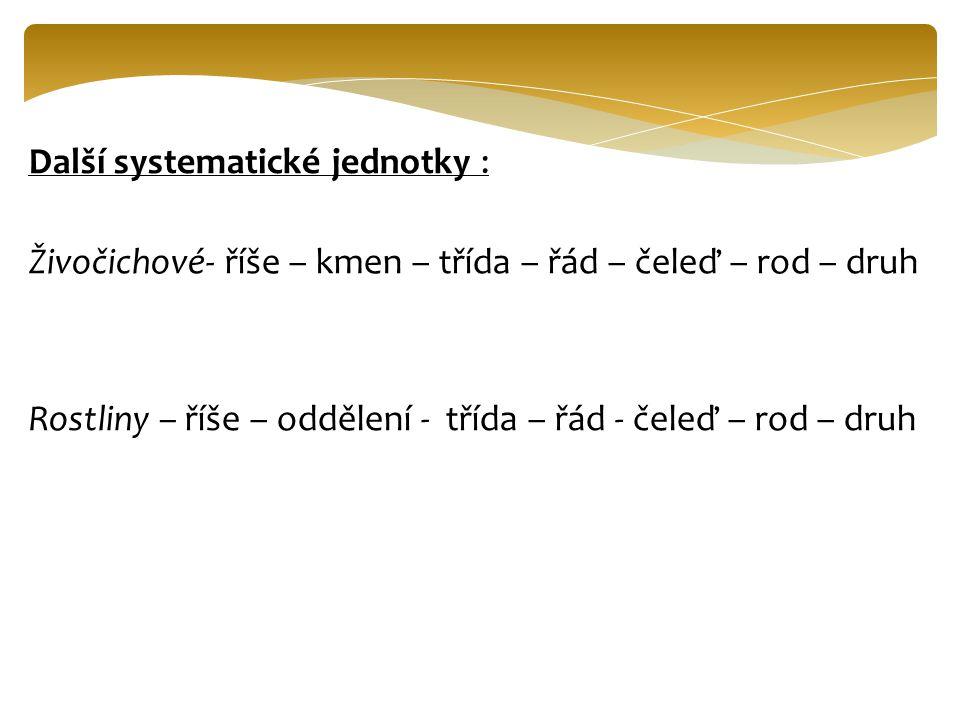 Další systematické jednotky :