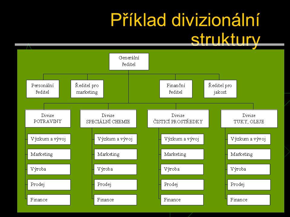 Příklad divizionální struktury