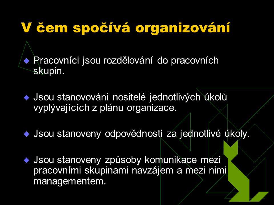 V čem spočívá organizování