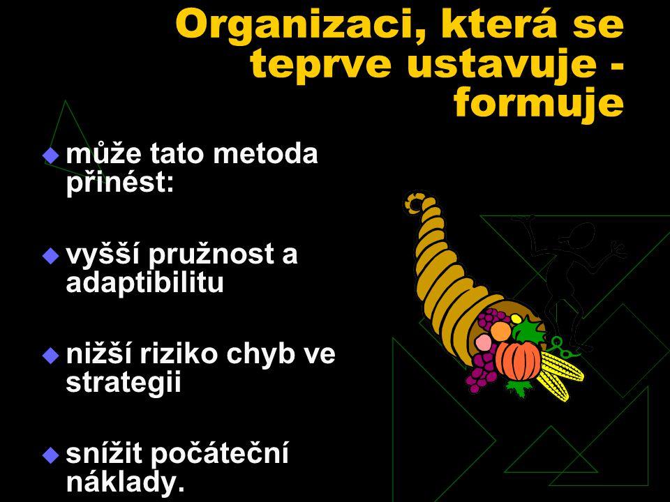 Organizaci, která se teprve ustavuje - formuje