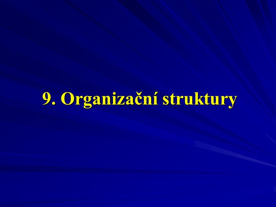 9. Organizační struktury