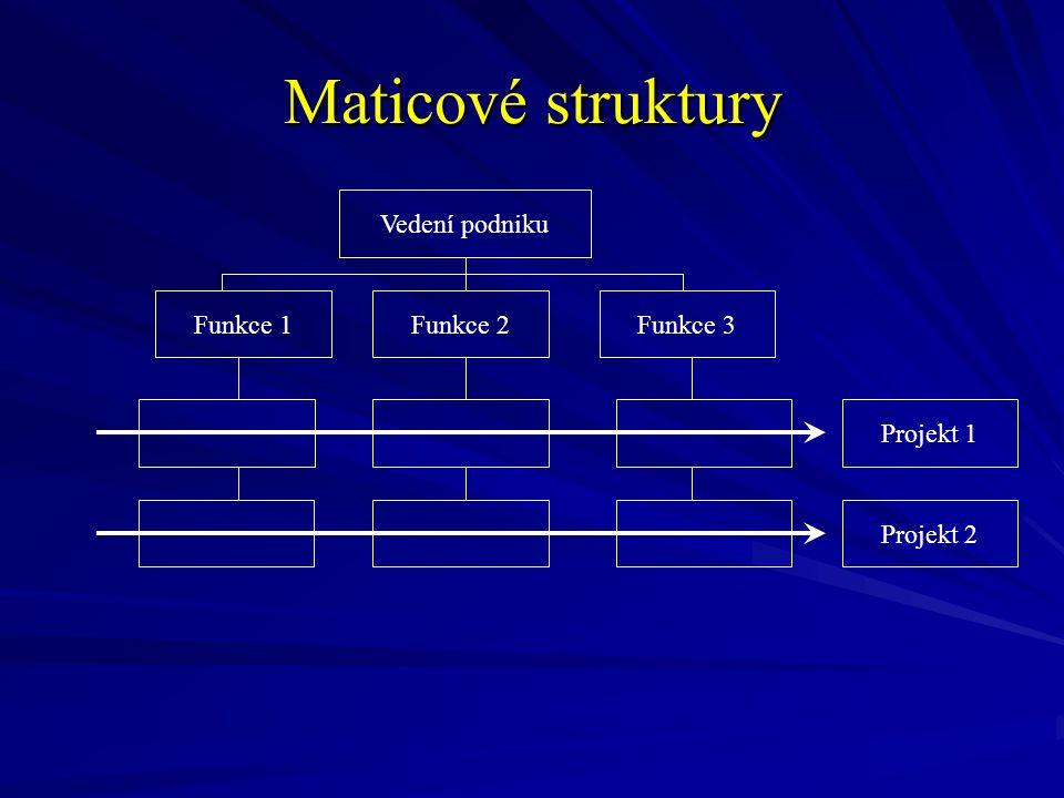 Maticové struktury Vedení podniku Funkce 1 Funkce 2 Funkce 3 Projekt 1