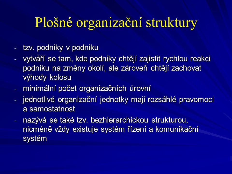 Plošné organizační struktury