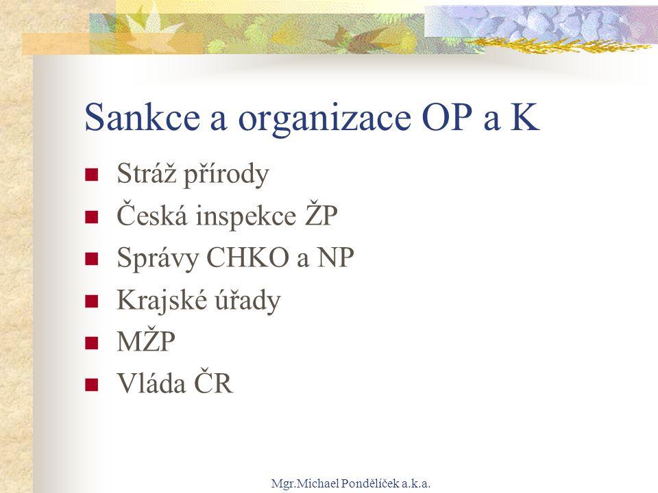 Sankce a organizace OP a K