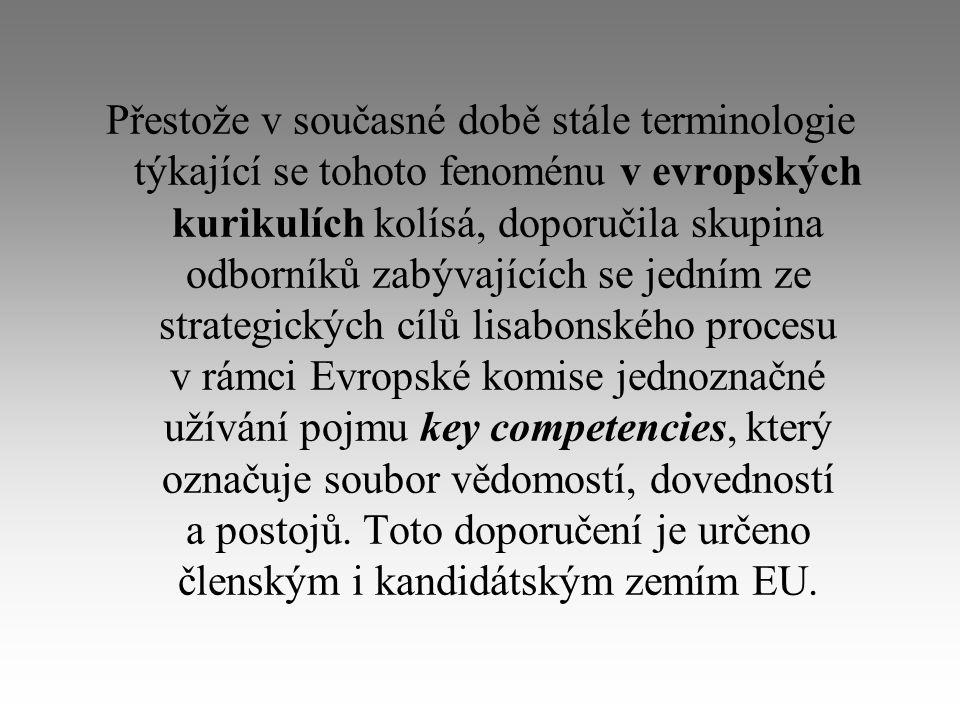 Přestože v současné době stále terminologie týkající se tohoto fenoménu v evropských kurikulích kolísá, doporučila skupina odborníků zabývajících se jedním ze strategických cílů lisabonského procesu v rámci Evropské komise jednoznačné užívání pojmu key competencies, který označuje soubor vědomostí, dovedností a postojů.