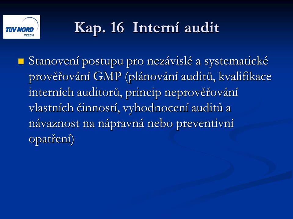 Kap. 16 Interní audit