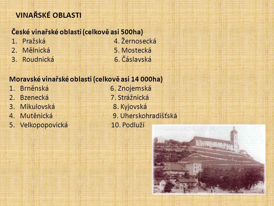 VINAŘSKÉ OBLASTI České vinařské oblasti (celkově asi 500ha)
