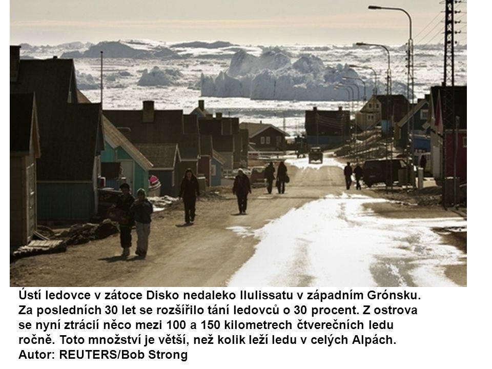 Ústí ledovce v zátoce Disko nedaleko Ilulissatu v západním Grónsku