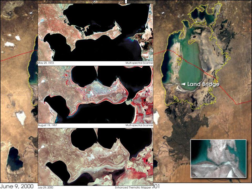 Nejvýraznějším krajinotvorným a všeovlivňujícím procesem je postupné obnažování dna Aralského jezera a rodící se poušť. Při vysychání jezera vznikají ve sníženinách izolovaná jezírka s roztoky solí a toxických chemikálií používaných k hnojení zavlažovaných polí. Terén mezi nimi vyplňují rozsáhlé solné pláně. To, že Aralské jezero leží jakoby sevřeno mezi pouštěmi Kyzylkum a Karakum, jen urychluje proces formování nové pouště, probíhající dnes na rozloze 3,4 milionu hektarů. Prachové bouře nad bývalým mořem a přilehlými oblastmi, vyvolané převažujícími severovýchodními větry, pokrývají celý region solemi a pesticidy, které sem obě řeky kdysi uložily. V roce 1993 spadlo na přilehlé oblasti 75 milionů kubíků prachu a solí. Sůl z Aralského jezera se dokonce několikrát dostala až do Běloruska (přes 2500 km severozápadně).