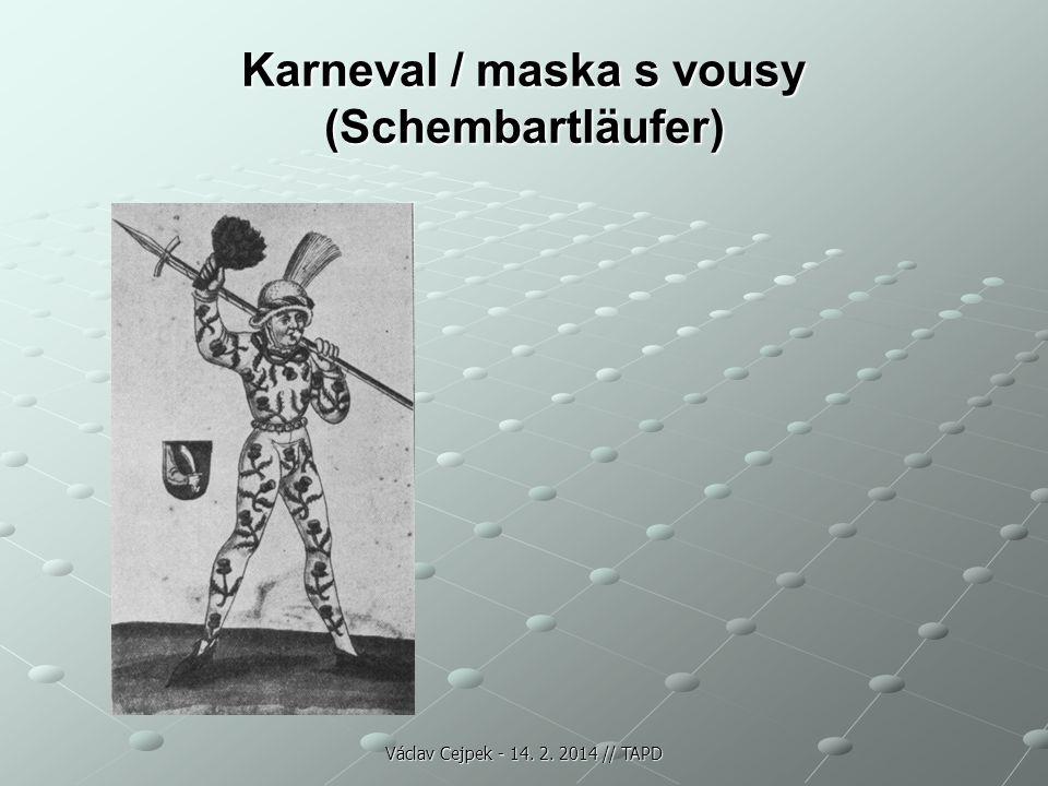 Karneval / maska s vousy (Schembartläufer)