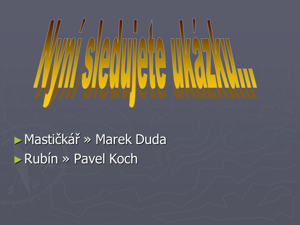 Nyní sledujete ukázku... Mastičkář » Marek Duda Rubín » Pavel Koch