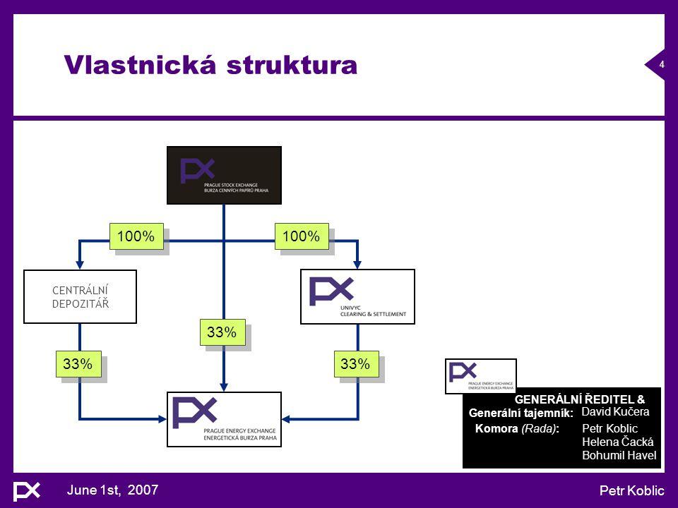 Vlastnická struktura 100% 100% 33% 33% 33% June 1st, 2007 Petr Koblic