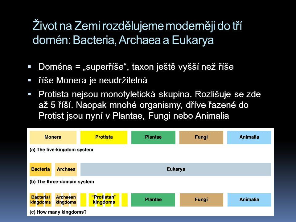 Život na Zemi rozdělujeme moderněji do tří domén: Bacteria, Archaea a Eukarya