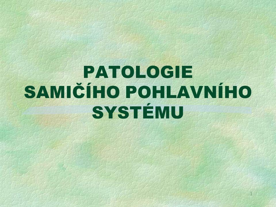 PATOLOGIE SAMIČÍHO POHLAVNÍHO SYSTÉMU