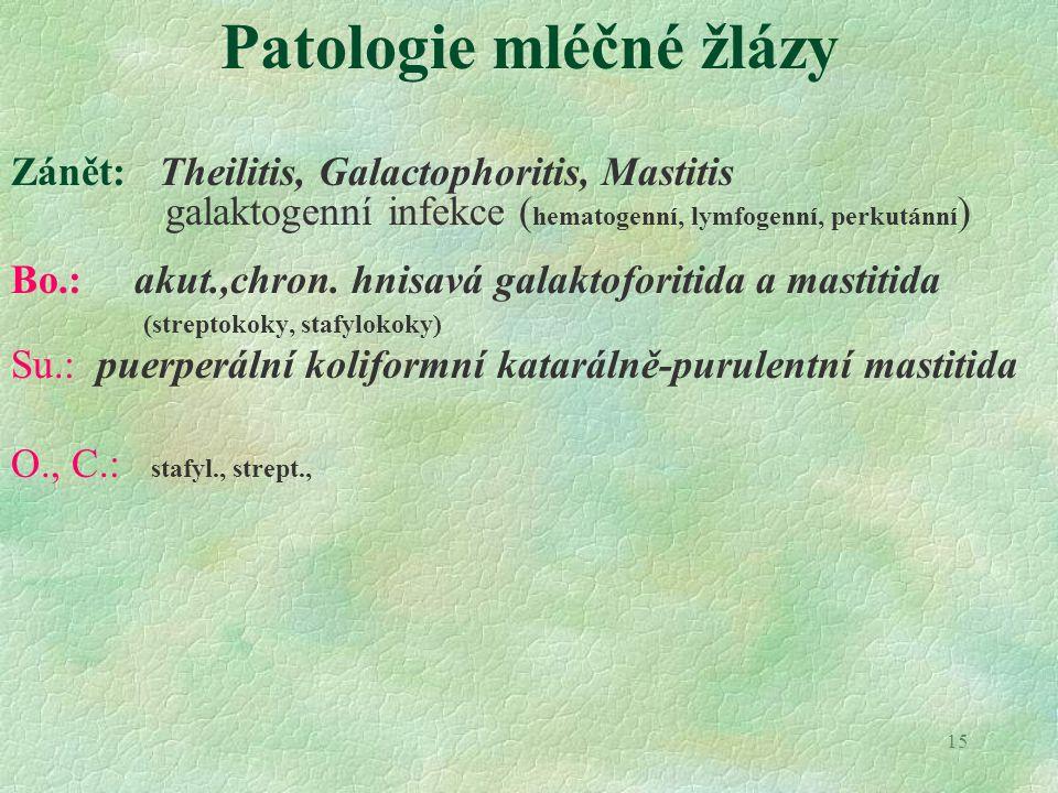 Patologie mléčné žlázy