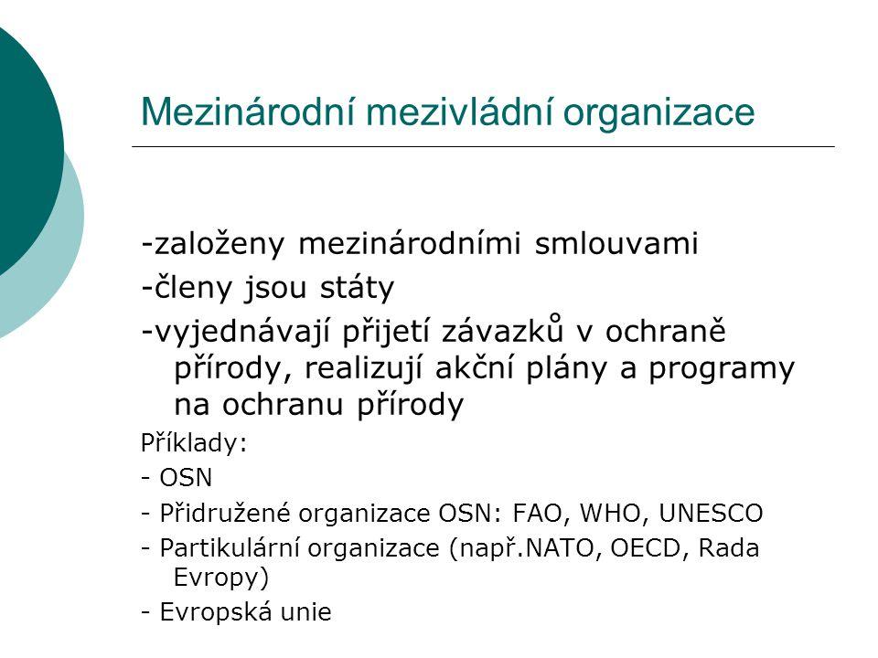 Mezinárodní mezivládní organizace