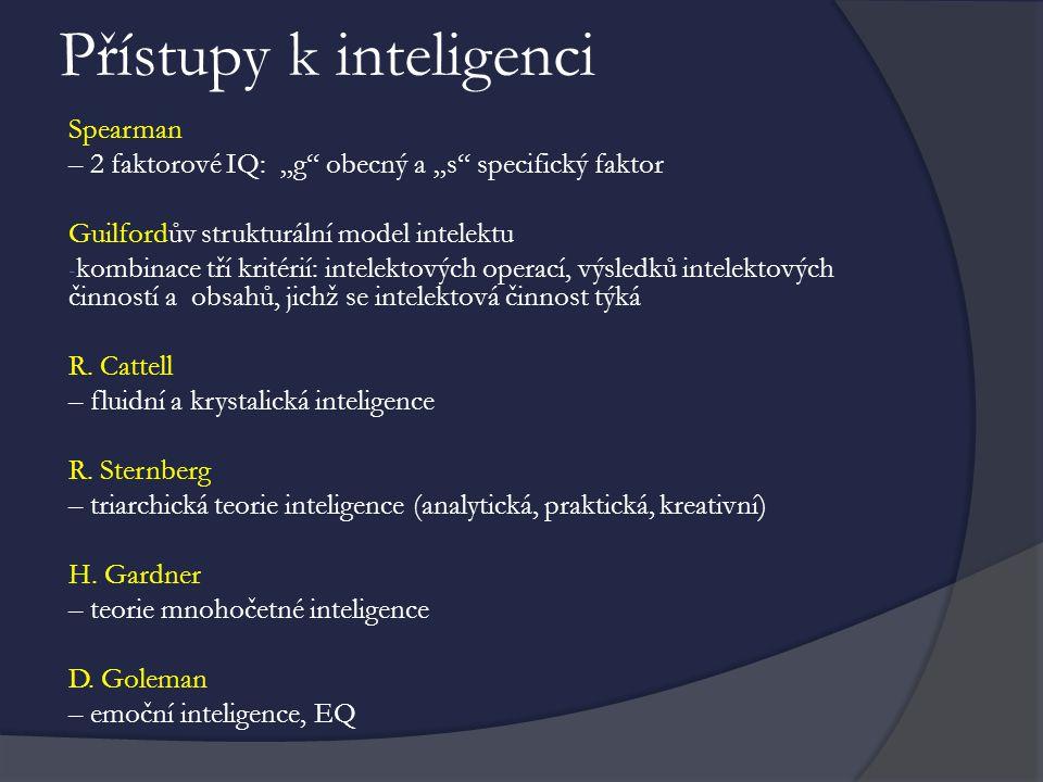 Přístupy k inteligenci