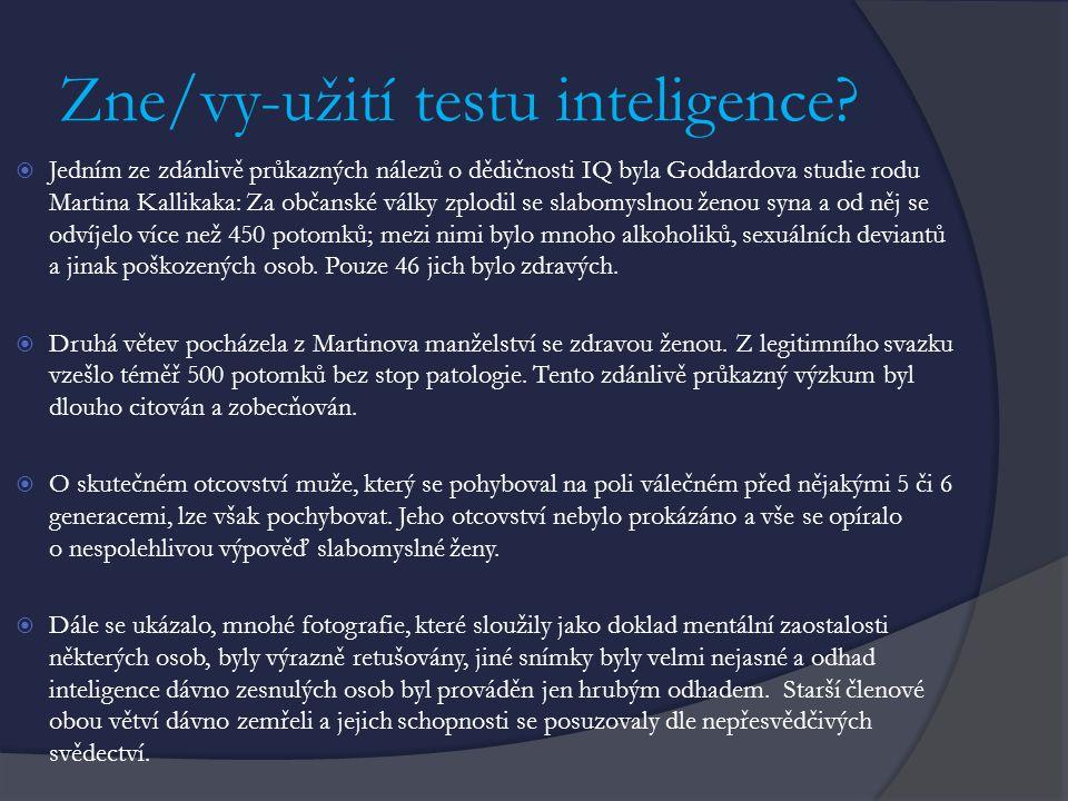 Zne/vy-užití testu inteligence