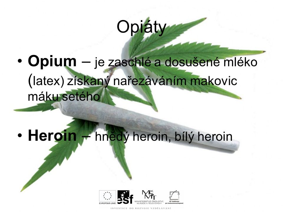 Opiáty Opium – je zaschlé a dosušené mléko (latex) získaný nařezáváním makovic máku setého.