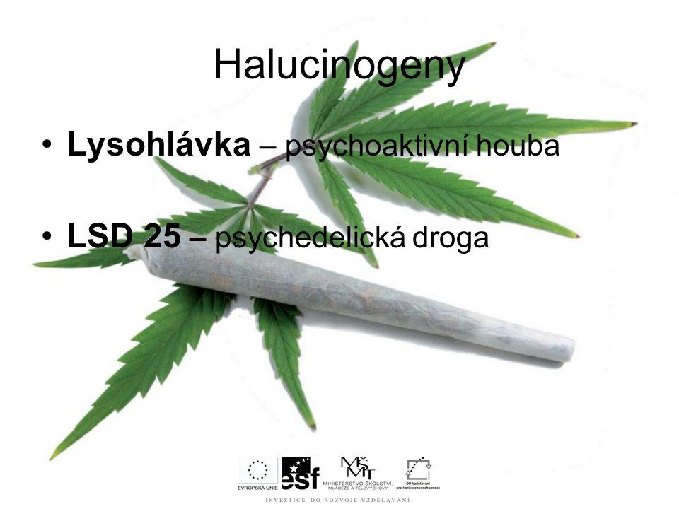 Halucinogeny Lysohlávka – psychoaktivní houba