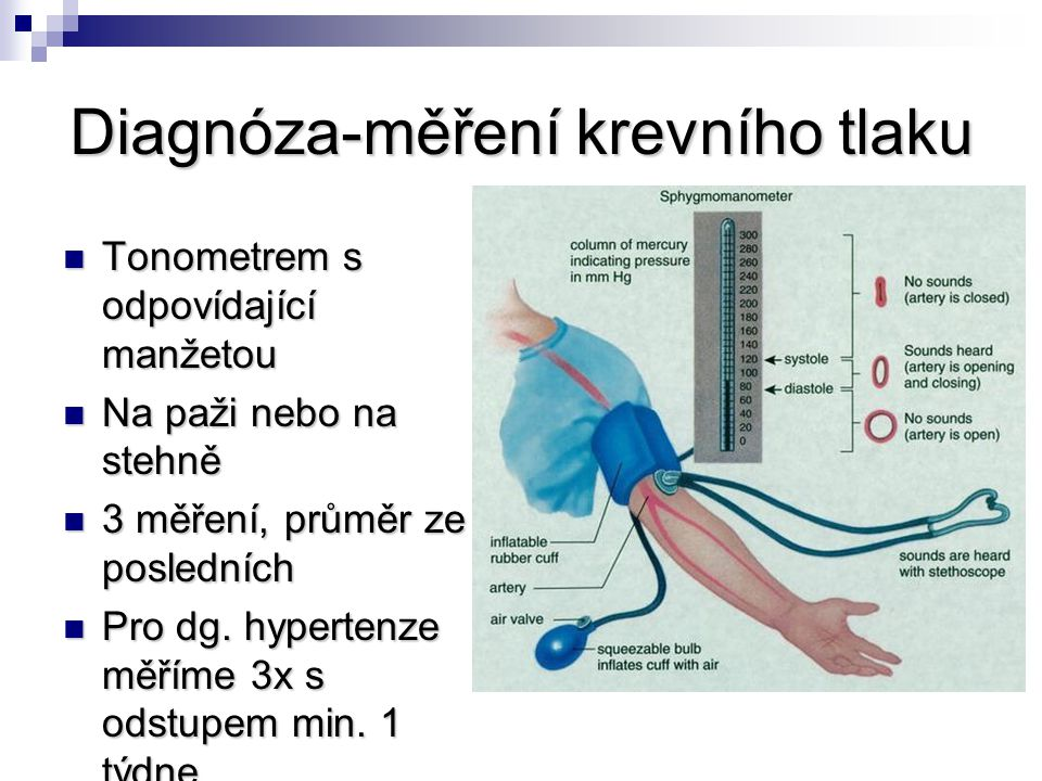 Diagnóza-měření krevního tlaku
