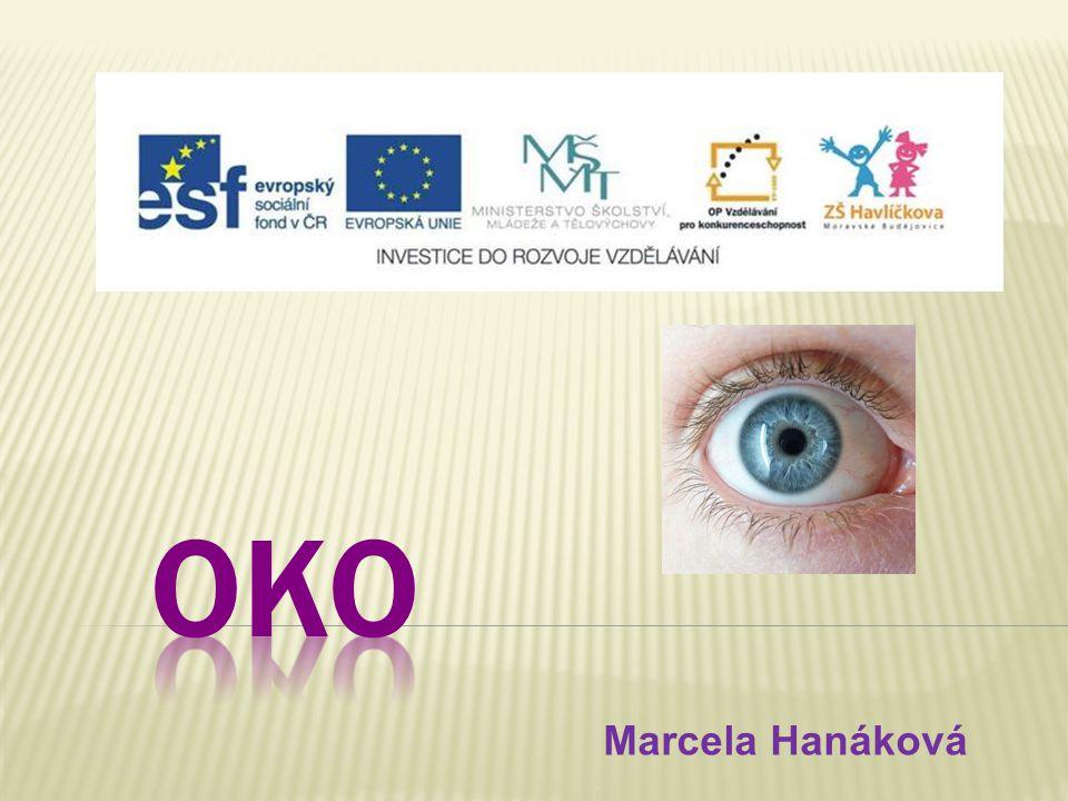 OKO Marcela Hanáková