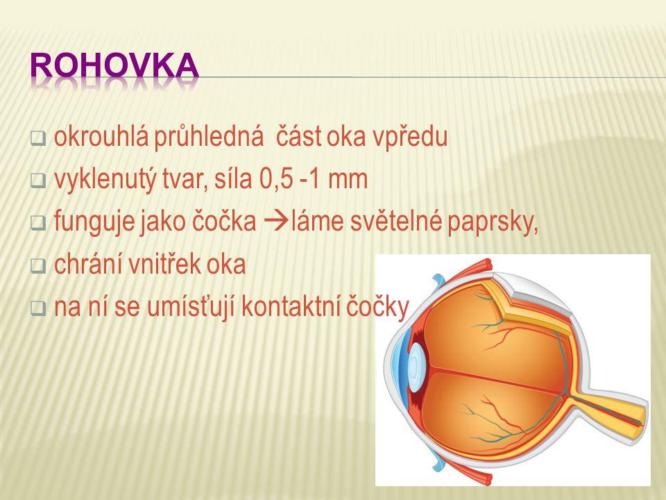 ROHOVKA okrouhlá průhledná část oka vpředu