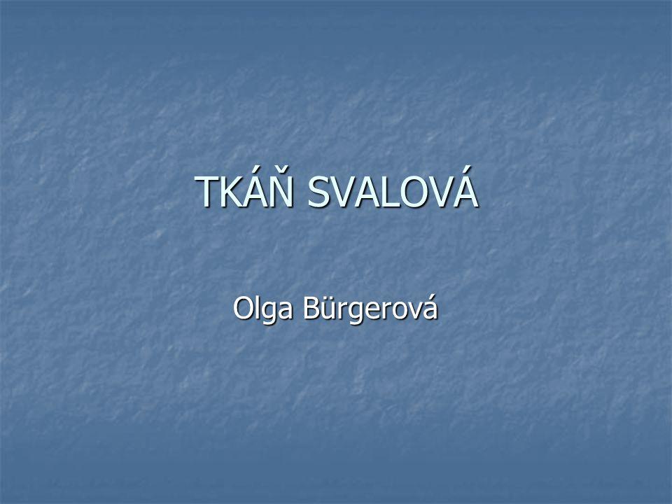 TKÁŇ SVALOVÁ Olga Bürgerová