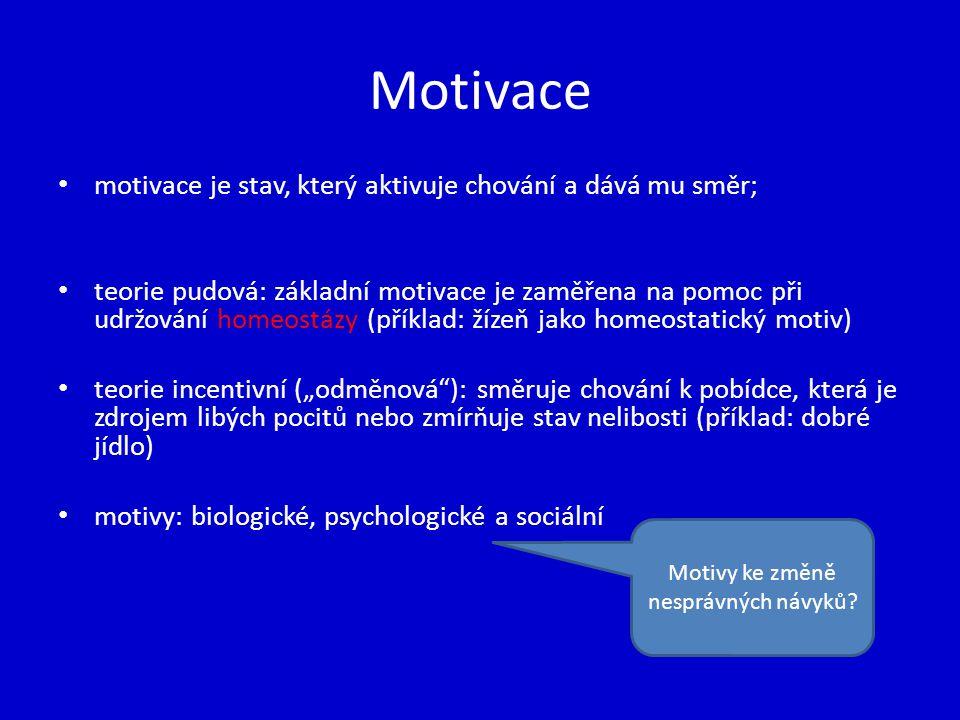 Motivy ke změně nesprávných návyků