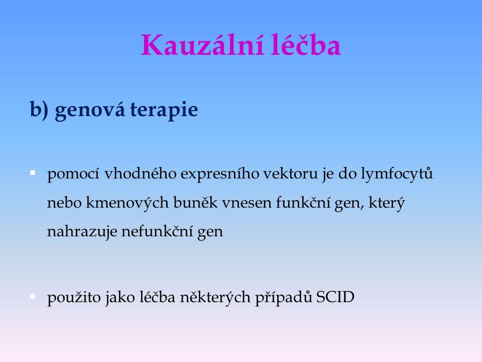 Kauzální léčba b) genová terapie