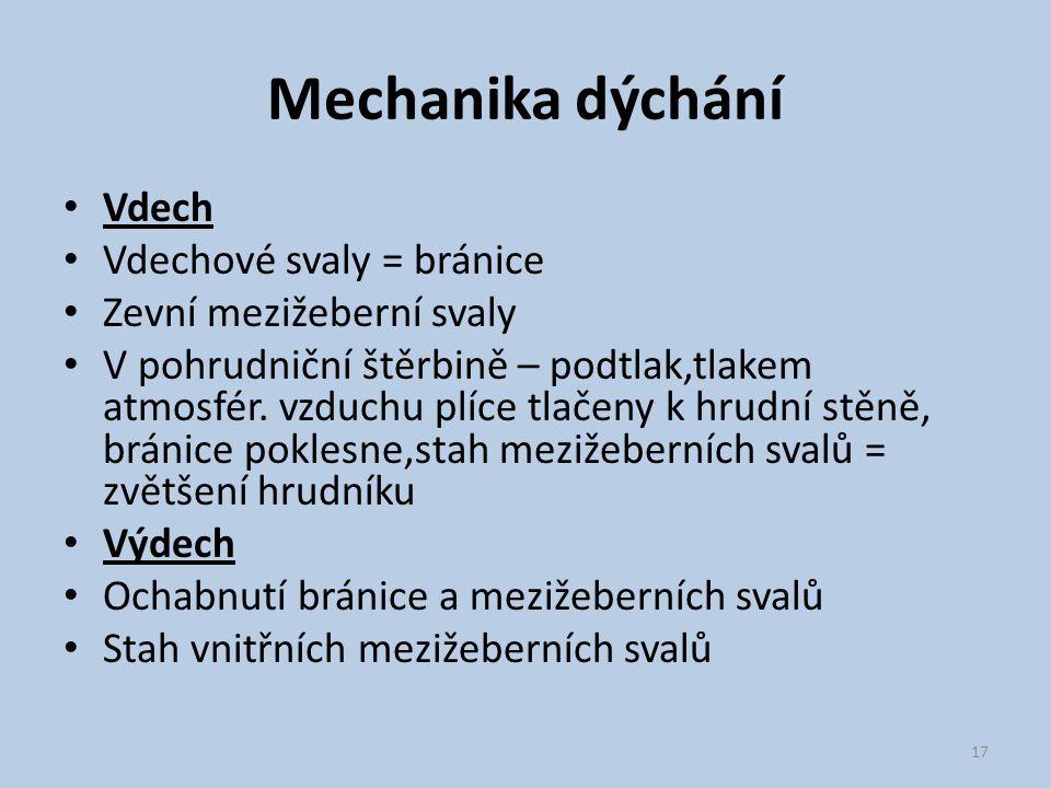 Mechanika dýchání Vdech Vdechové svaly = bránice