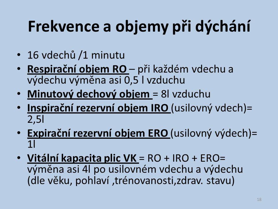 Frekvence a objemy při dýchání