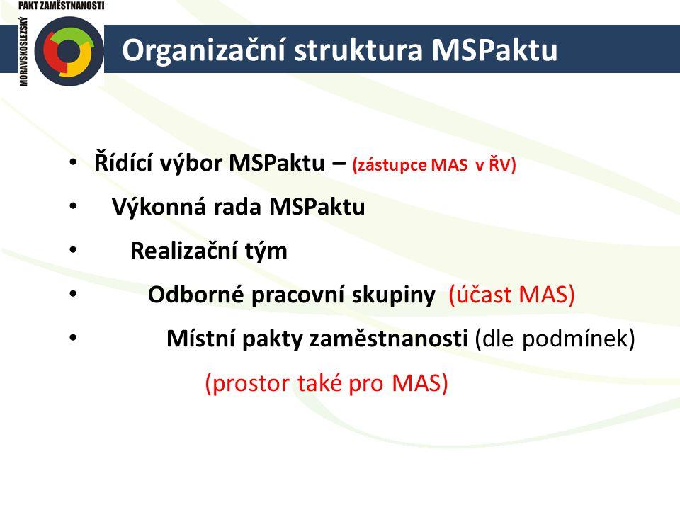Organizační struktura MSPaktu
