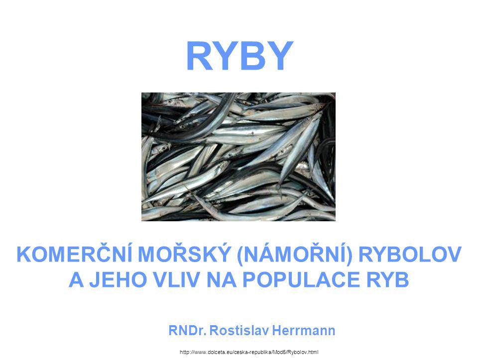 RYBY KOMERČNÍ MOŘSKÝ (NÁMOŘNÍ) RYBOLOV A JEHO VLIV NA POPULACE RYB