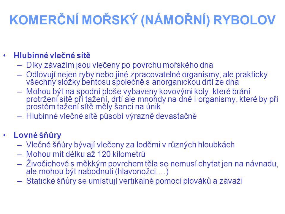KOMERČNÍ MOŘSKÝ (NÁMOŘNÍ) RYBOLOV
